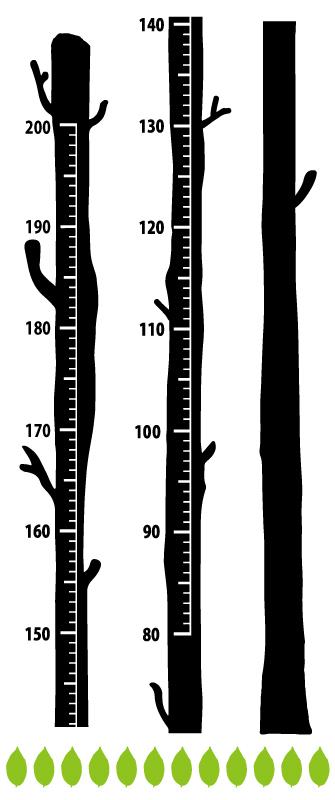木の身長計ウォールステッカー