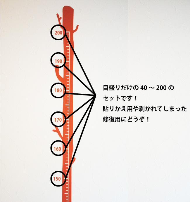 ezn-001-001-3