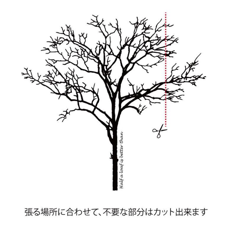 syo-001-017